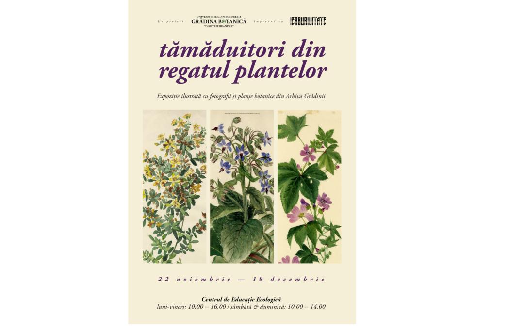 """Expoziția ,,Tămăduitori din regatul plantelor"""" la Grădina Botanică """"Dimitrie Brândză"""" a Universităţii din Bucureşti"""