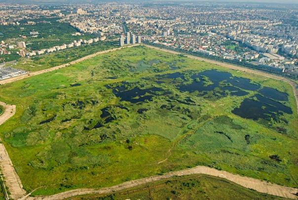 Universitatea din Bucureşti, partener al Administraţiei Parcului Natural Văcăreşti