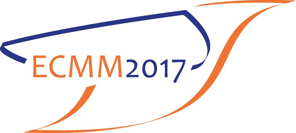 Cea de-a VI-a Conferință Europeană de Magnetism Molecular, organizată în parteneriat cu Universitatea din București