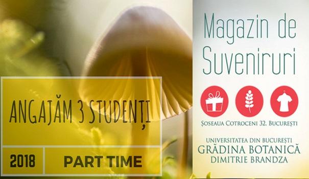Oportunitate de job part-time pentru studenții Universității din București la Magazinul de suveniruri din Grădina Botanică Dimitrie Brândză
